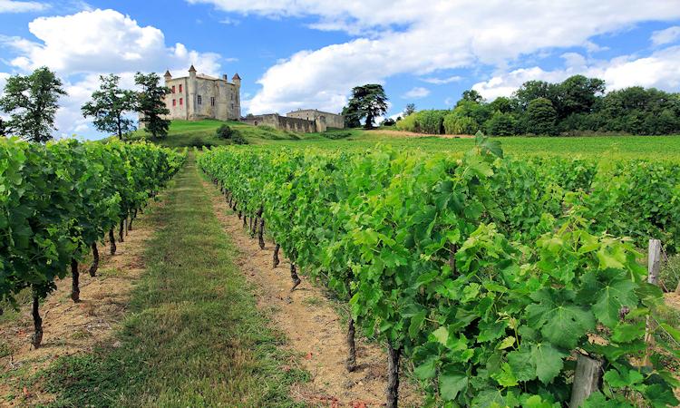 burdeos vino frances
